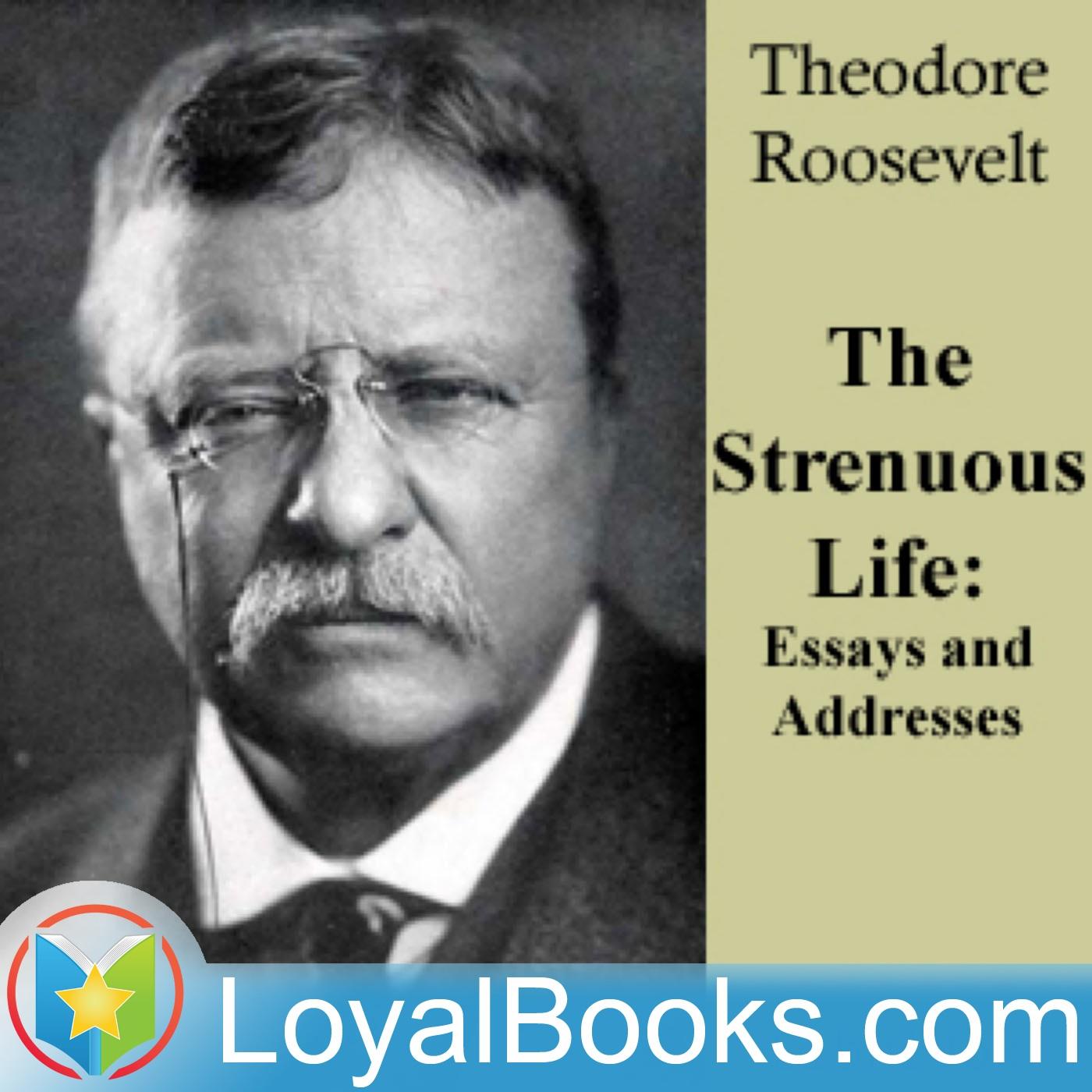 theodore roosevelt biography essay