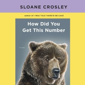 How Did You Get This Number (Unabridged) by Sloane Crosley