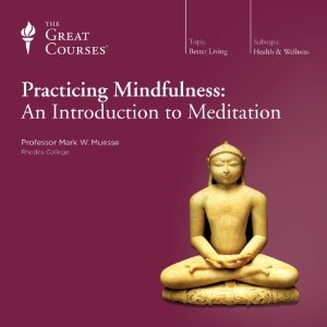 Practicing Mindfulness: An Introduction to Meditation by The Great Courses